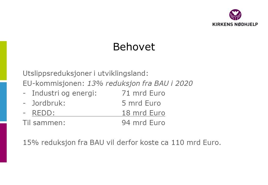 Behovet Utslippsreduksjoner i utviklingsland: EU-kommisjonen: 13% reduksjon fra BAU i 2020 -Industri og energi:71 mrd Euro -Jordbruk: 5 mrd Euro -REDD: 18 mrd Euro Til sammen:94 mrd Euro 15% reduksjon fra BAU vil derfor koste ca 110 mrd Euro.