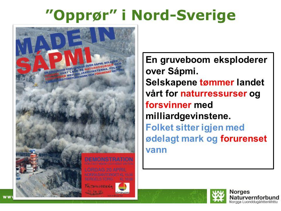 """www.naturvernforbundet.no Norgga Luonddugáhttenlihttu """"Opprør"""" i Nord-Sverige En gruveboom eksploderer over Sápmi. Selskapene tømmer landet vårt for n"""