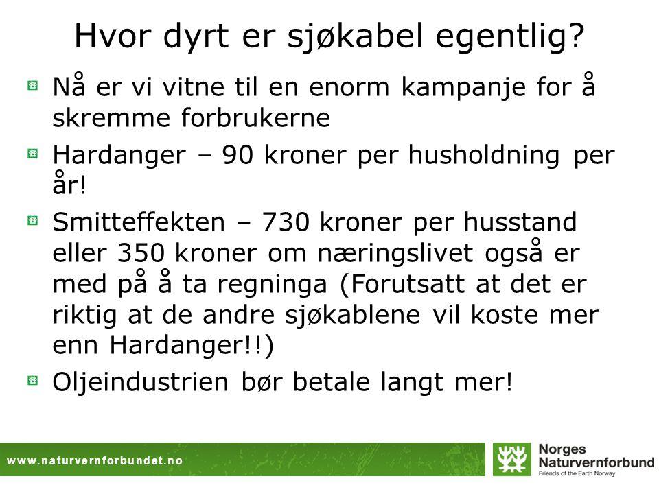 www.naturvernforbundet.no Hva med mulighetene for mer fornybar energi.