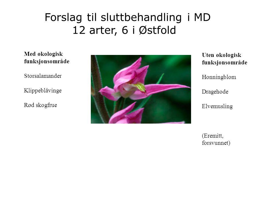 Med økologisk funksjonsområde Storsalamander Klippeblåvinge Rød skogfrue Forslag til sluttbehandling i MD 12 arter, 6 i Østfold Foto: Bård Bredesen Ut