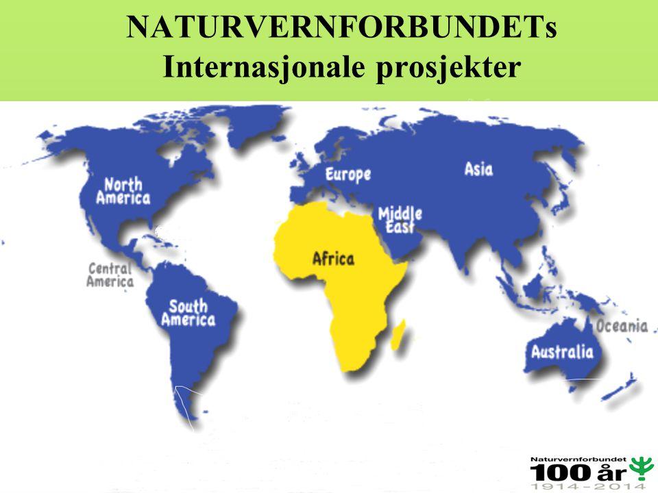 NATURVERNFORBUNDETs Internasjonale prosjekter