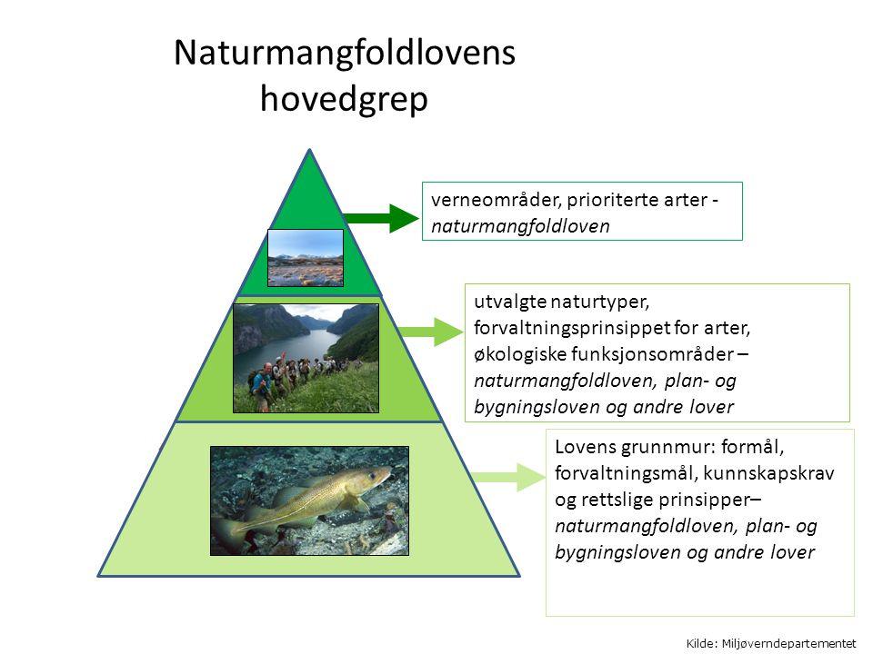 Naturmangfoldlovens hovedgrep verneområder, prioriterte arter - naturmangfoldloven utvalgte naturtyper, forvaltningsprinsippet for arter, økologiske f