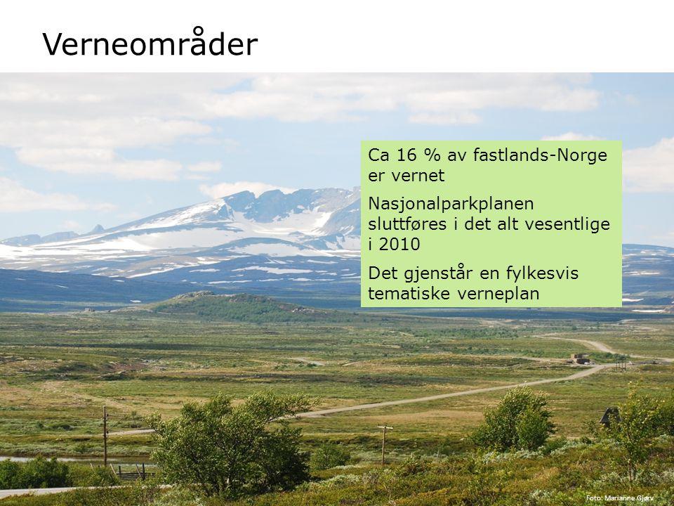 Verneområder Ca 16 % av fastlands-Norge er vernet Nasjonalparkplanen sluttføres i det alt vesentlige i 2010 Det gjenstår en fylkesvis tematiske vernep