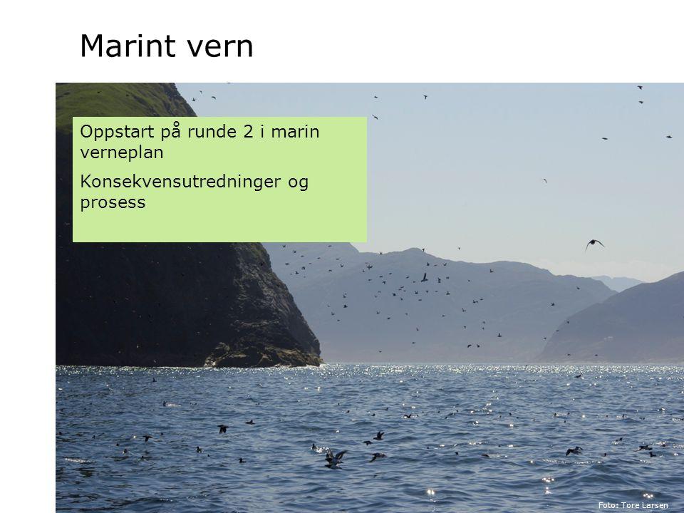 Forvaltning og skjøtsel Foto: Marianne Gjørv Foto: Asbjørn Børset Økt fokus på Forvaltning, skjøtsel og naturveiledning