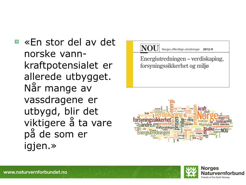 «En stor del av det norske vann- kraftpotensialet er allerede utbygget. Når mange av vassdragene er utbygd, blir det viktigere å ta vare på de som er