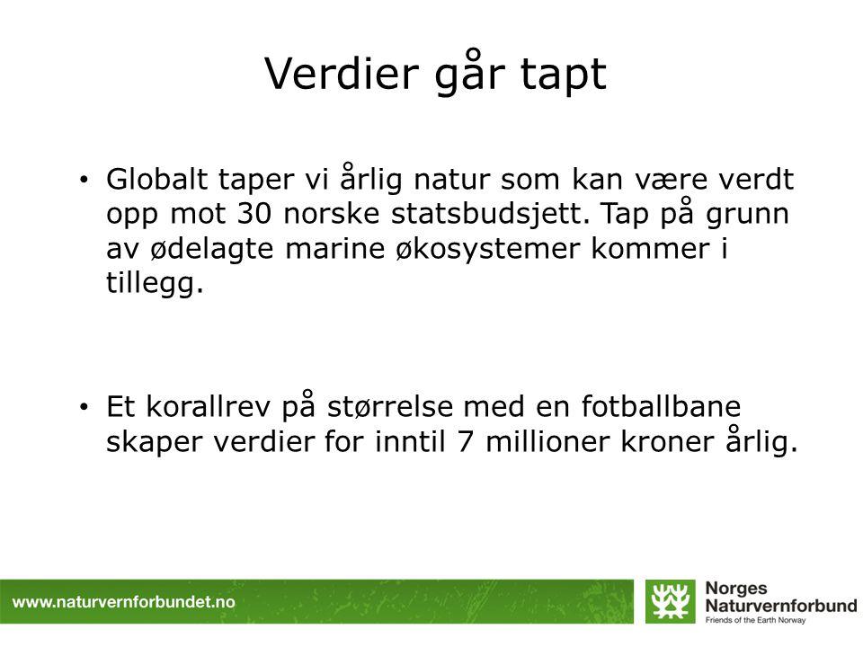 Verdier går tapt Globalt taper vi årlig natur som kan være verdt opp mot 30 norske statsbudsjett.