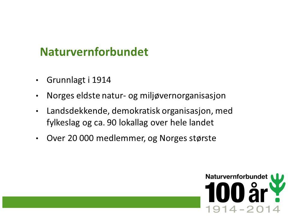 Naturvernforbundet Grunnlagt i 1914 Norges eldste natur- og miljøvernorganisasjon Landsdekkende, demokratisk organisasjon, med fylkeslag og ca. 90 lok