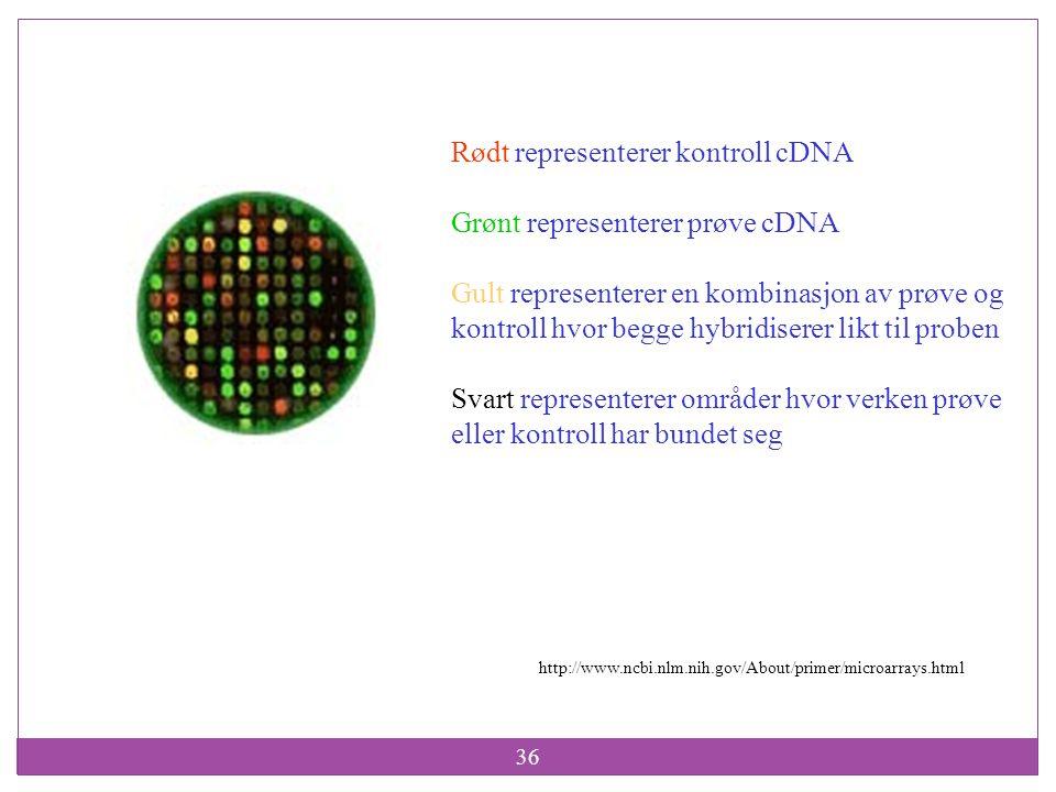 36 http://www.ncbi.nlm.nih.gov/About/primer/microarrays.html Rødt representerer kontroll cDNA Grønt representerer prøve cDNA Gult representerer en kom