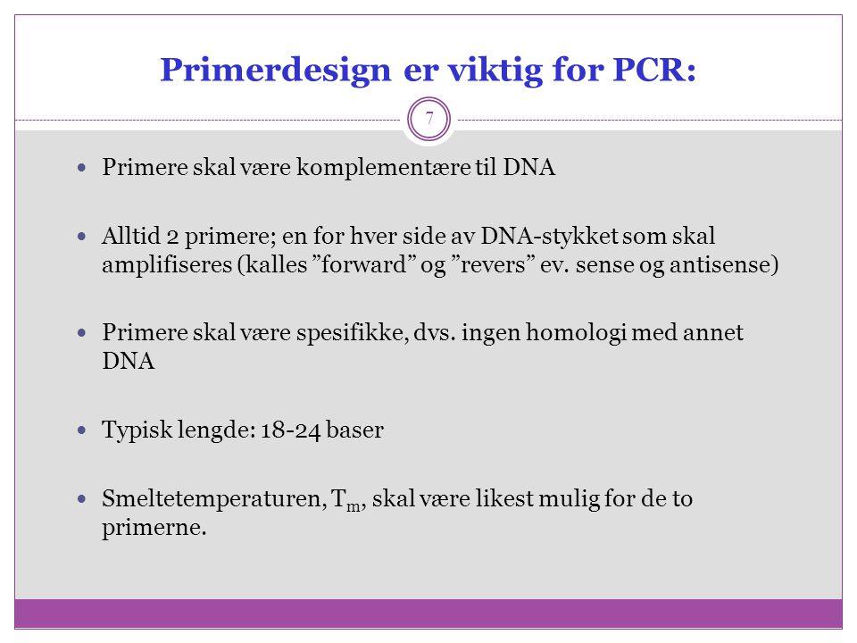Deteksjon av PCR produkter skjer ved farging av det amplifiserte DNA med ethidiumbromid og elektroforese i en agarose gel 8