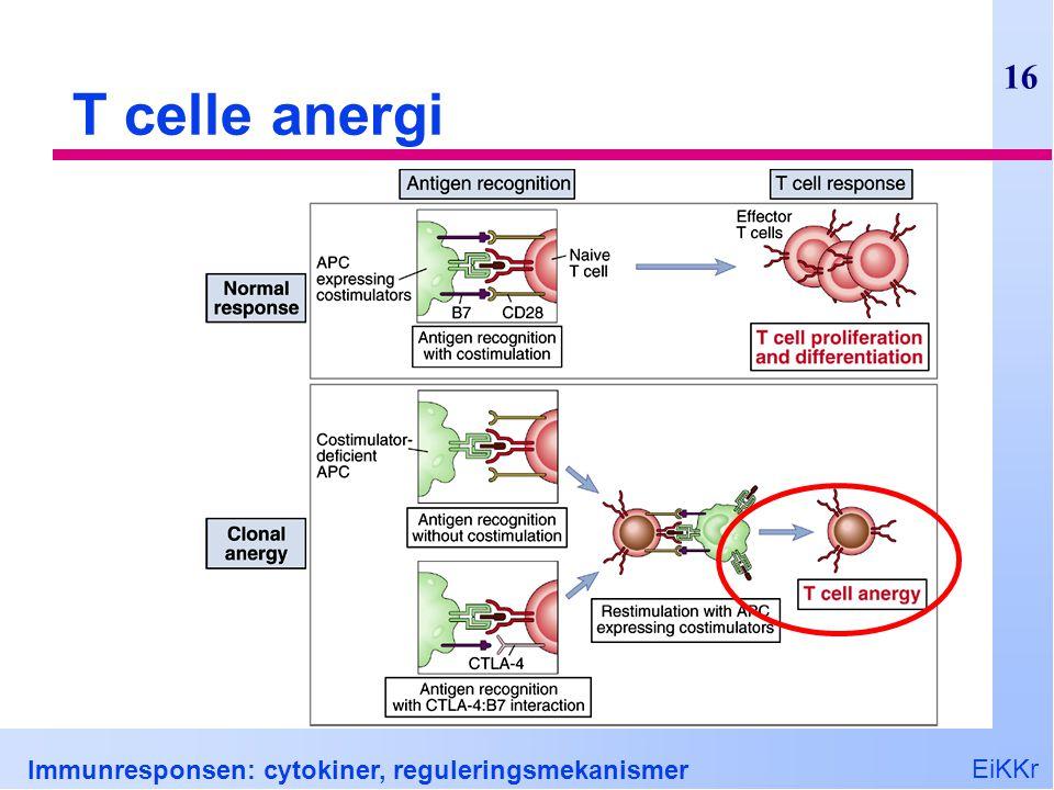 EiKKr Immunresponsen: cytokiner, reguleringsmekanismer 16 T celle anergi