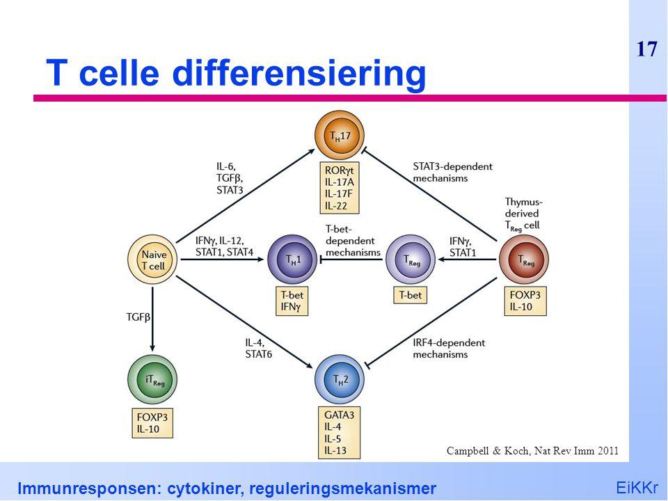 EiKKr Immunresponsen: cytokiner, reguleringsmekanismer 17 T celle differensiering Campbell & Koch, Nat Rev Imm 2011