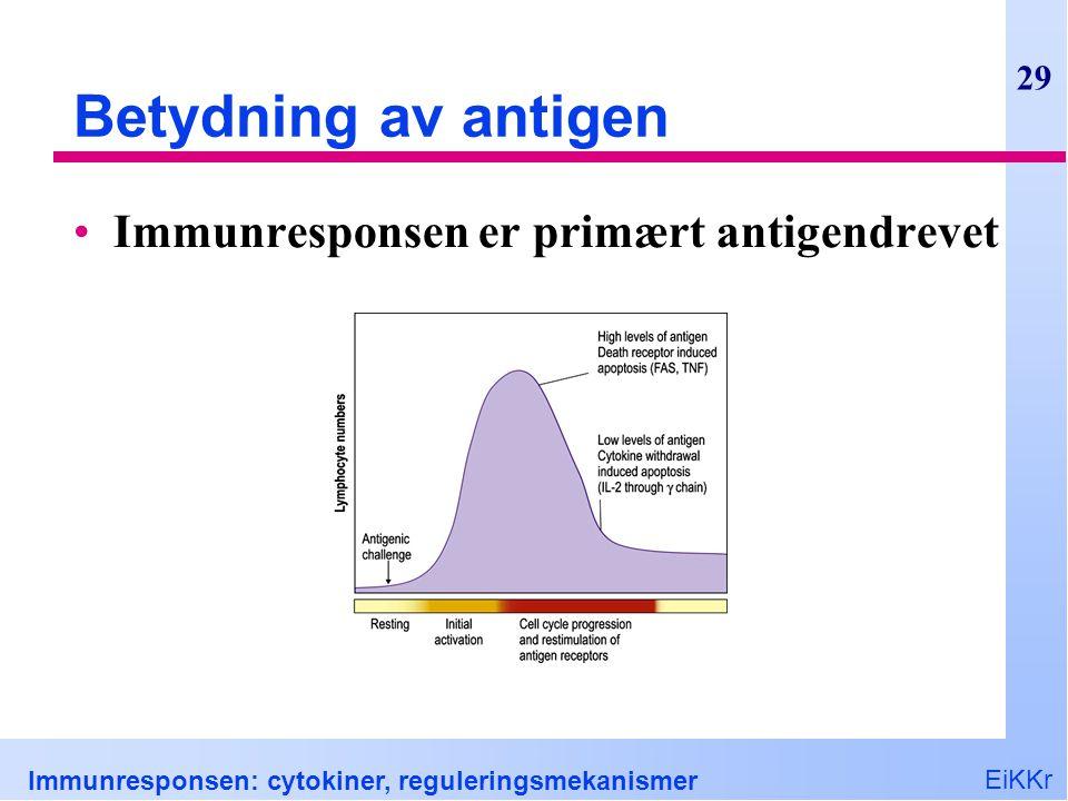 EiKKr Immunresponsen: cytokiner, reguleringsmekanismer 29 Betydning av antigen Immunresponsen er primært antigendrevet