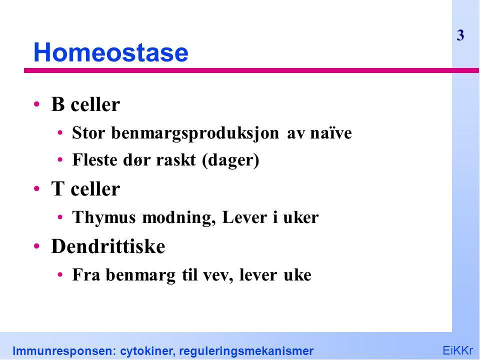EiKKr Immunresponsen: cytokiner, reguleringsmekanismer 3 Homeostase B celler Stor benmargsproduksjon av naïve Fleste dør raskt (dager) T celler Thymus modning, Lever i uker Dendrittiske Fra benmarg til vev, lever uke