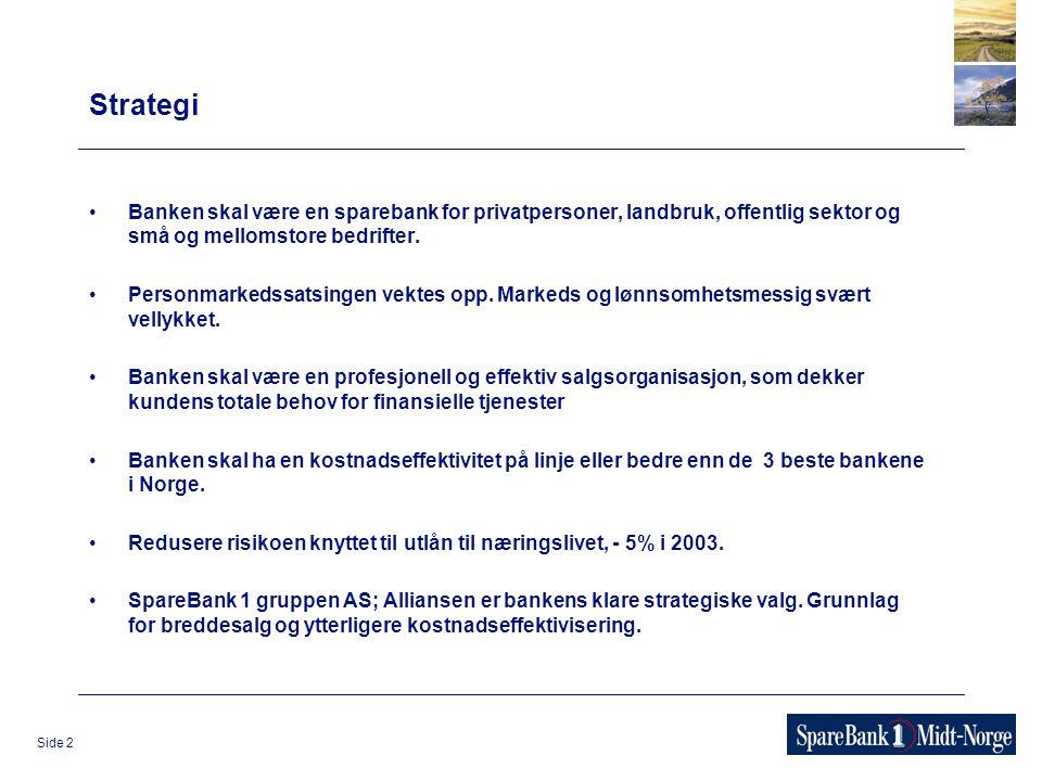 Side 2 Strategi Banken skal være en sparebank for privatpersoner, landbruk, offentlig sektor og små og mellomstore bedrifter. Personmarkedssatsingen v