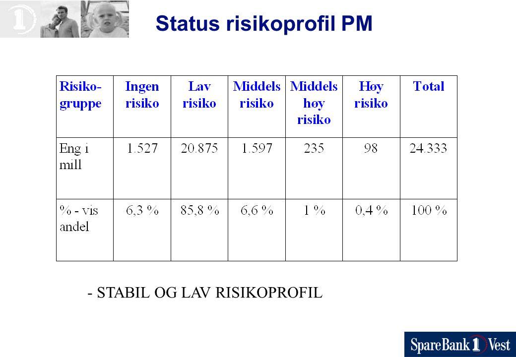 Status risikoprofil PM - STABIL OG LAV RISIKOPROFIL