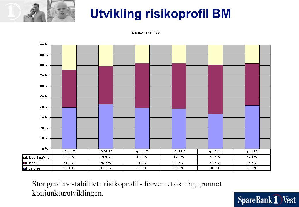 Utvikling risikoprofil BM Stor grad av stabilitet i risikoprofil - forventet økning grunnet konjunkturutviklingen.