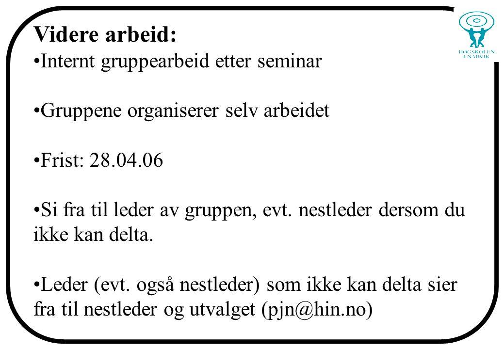 Videre arbeid: Internt gruppearbeid etter seminar Gruppene organiserer selv arbeidet Frist: 28.04.06 Si fra til leder av gruppen, evt. nestleder derso