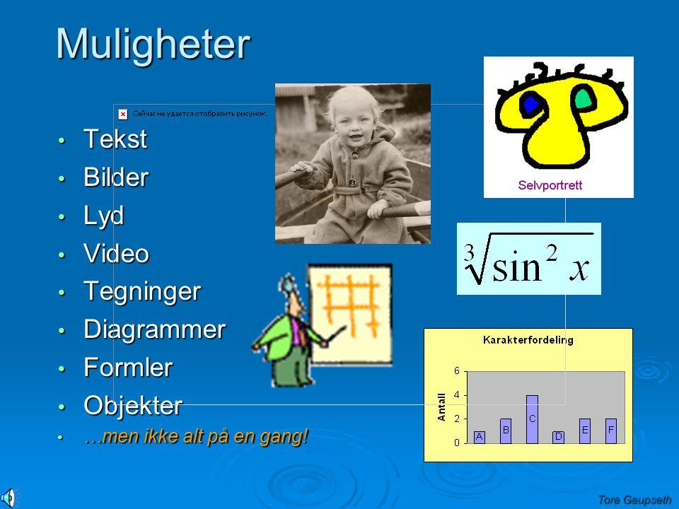 Muligheter Tekst Tekst Bilder Bilder Lyd Lyd Video Video Tegninger Tegninger Diagrammer Diagrammer Formler Formler Objekter Objekter …men ikke alt på en gang.