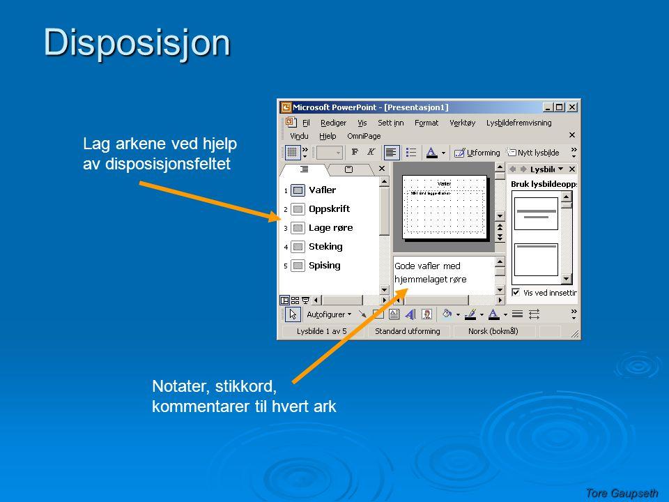 Tore Gaupseth Disposisjon Lag arkene ved hjelp av disposisjonsfeltet Notater, stikkord, kommentarer til hvert ark