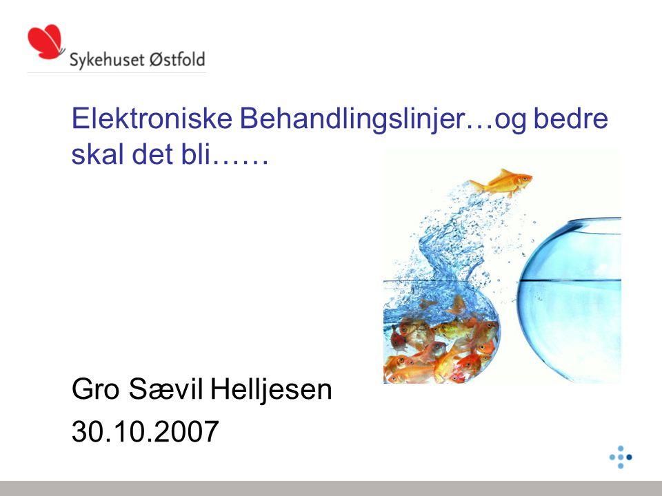 Elektroniske Behandlingslinjer…og bedre skal det bli…… Gro Sævil Helljesen 30.10.2007
