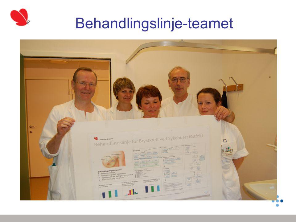 Behandlingslinje-teamet