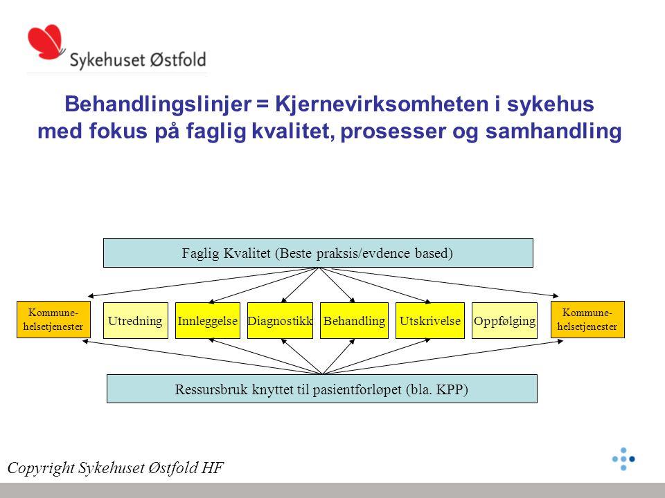 Behandlingslinjer = Kjernevirksomheten i sykehus med fokus på faglig kvalitet, prosesser og samhandling Kommune- helsetjenester UtredningBehandlingInn