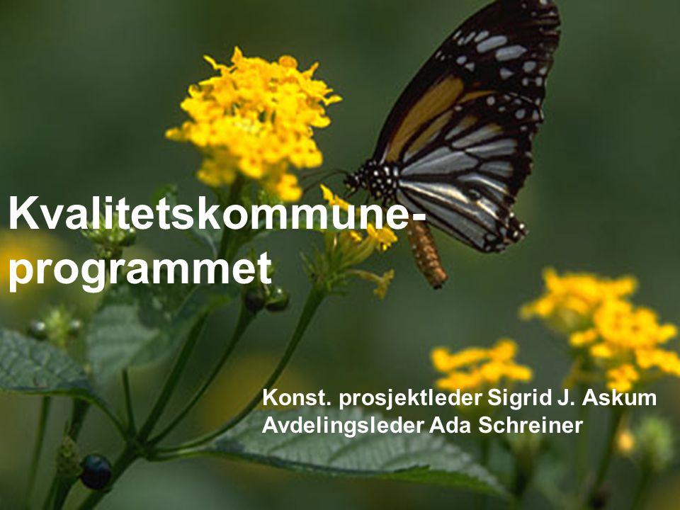 1 Kvalitetskommune- programmet Konst. prosjektleder Sigrid J. Askum Avdelingsleder Ada Schreiner