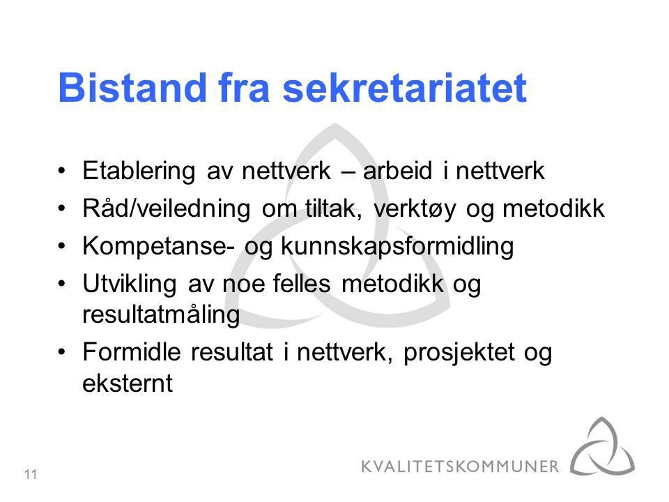 11 Etablering av nettverk – arbeid i nettverk Råd/veiledning om tiltak, verktøy og metodikk Kompetanse- og kunnskapsformidling Utvikling av noe felles