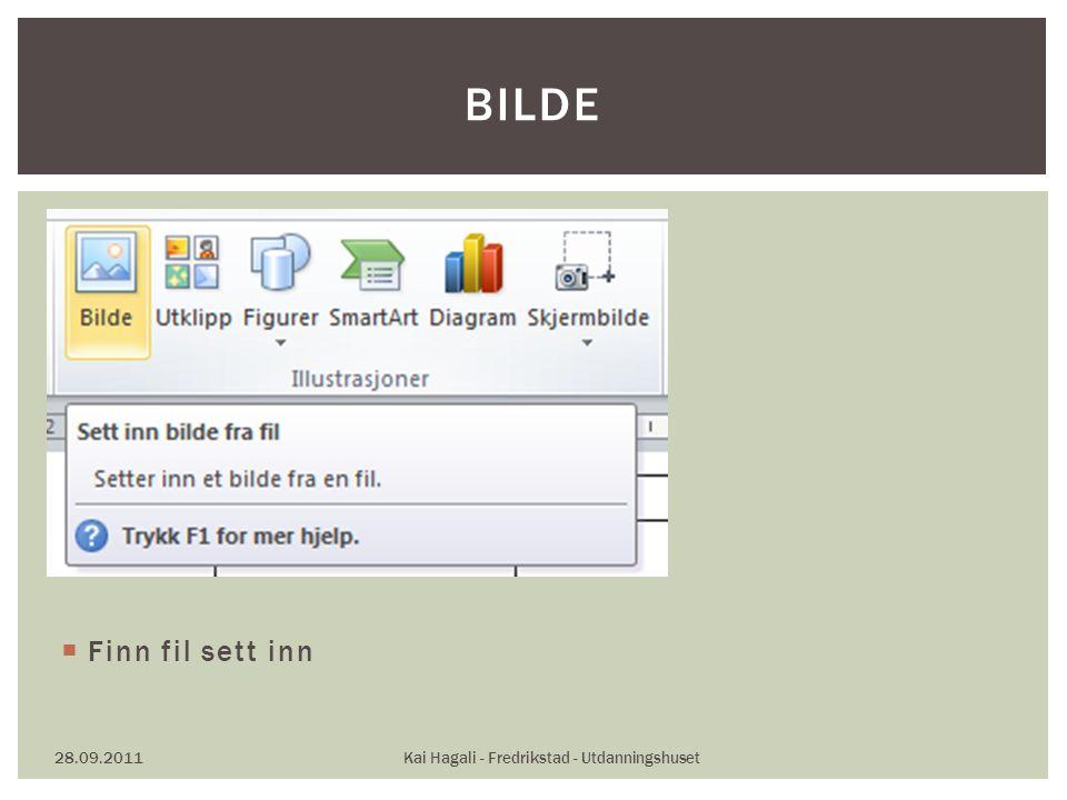  Finn fil sett inn 28.09.2011Kai Hagali - Fredrikstad - Utdanningshuset BILDE