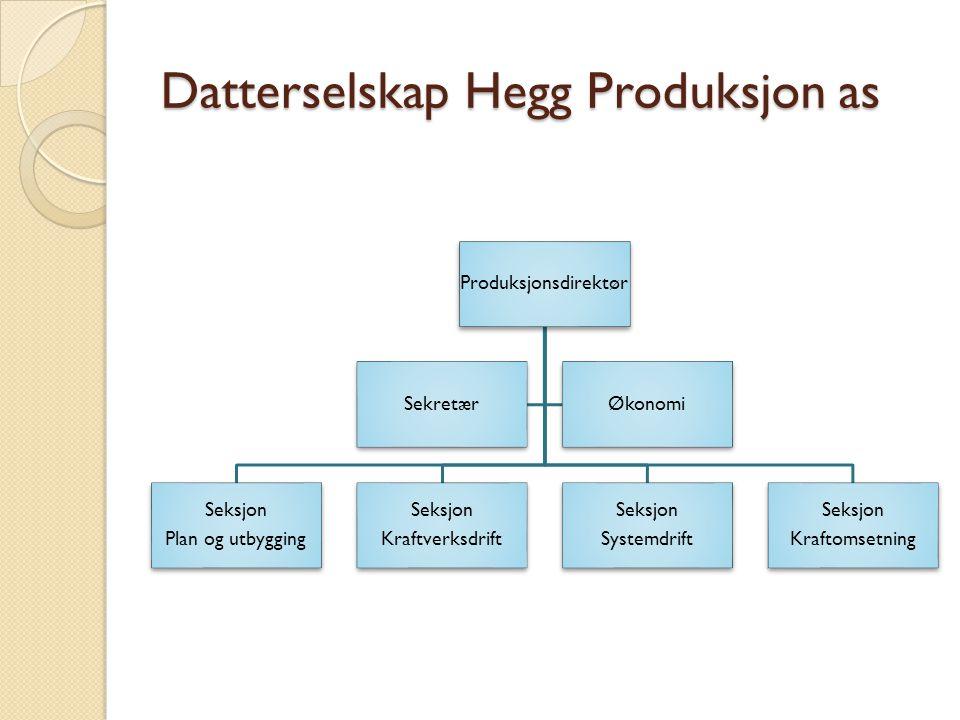 Datterselskap Hegg Produksjon as Produksjonsdirektør Seksjon Plan og utbygging Seksjon Kraftverksdrift Seksjon Systemdrift Seksjon Kraftomsetning SekretærØkonomi