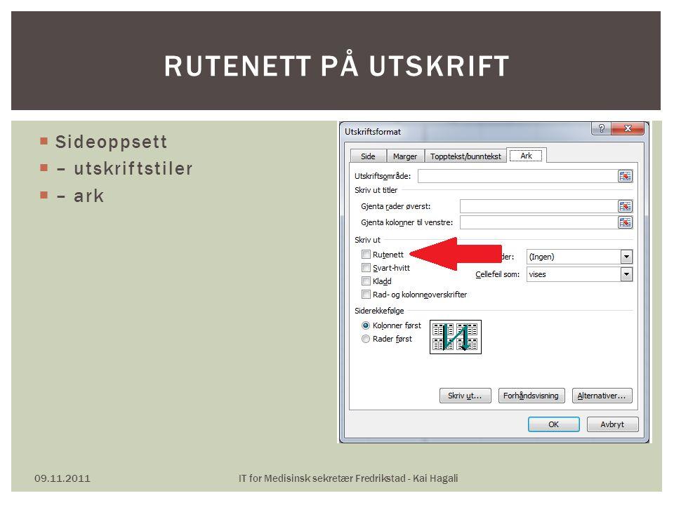  Sideoppsett  – utskriftstiler  – ark 09.11.2011IT for Medisinsk sekretær Fredrikstad - Kai Hagali RUTENETT PÅ UTSKRIFT