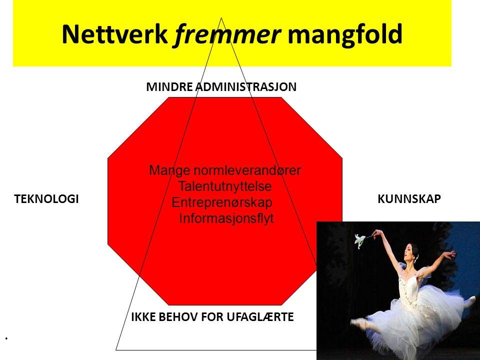 Nettverk fremmer mangfold MINDRE ADMINISTRASJON TEKNOLOGI KUNNSKAP IKKE BEHOV FOR UFAGLÆRTE Mange normleverandører Talentutnyttelse Entreprenørskap Informasjonsflyt