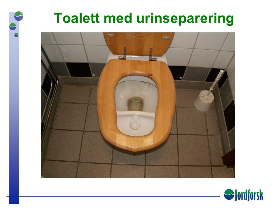 Urinseparering og kompostering av fekalier er det mulig?  Uten redusert komfort?