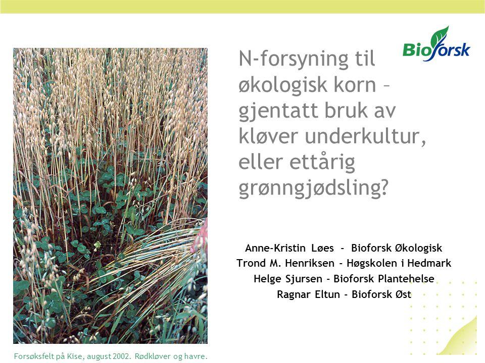 N-forsyning til økologisk korn – gjentatt bruk av kløver underkultur, eller ettårig grønngjødsling.