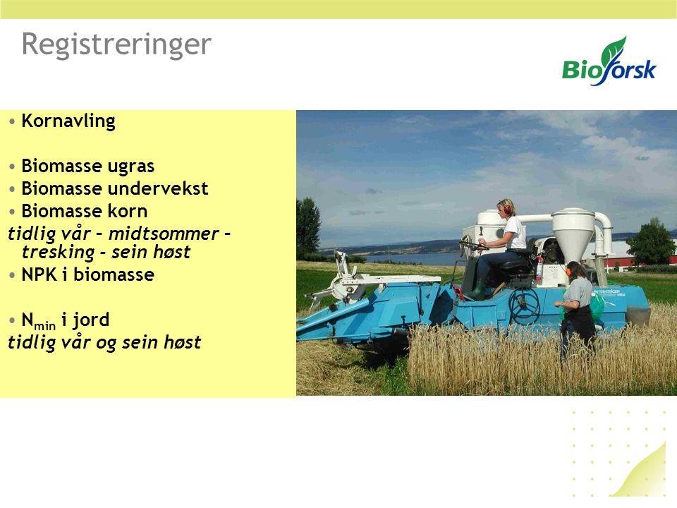Registreringer Kornavling Biomasse ugras Biomasse undervekst Biomasse korn tidlig vår – midtsommer – tresking - sein høst NPK i biomasse N min i jord tidlig vår og sein høst