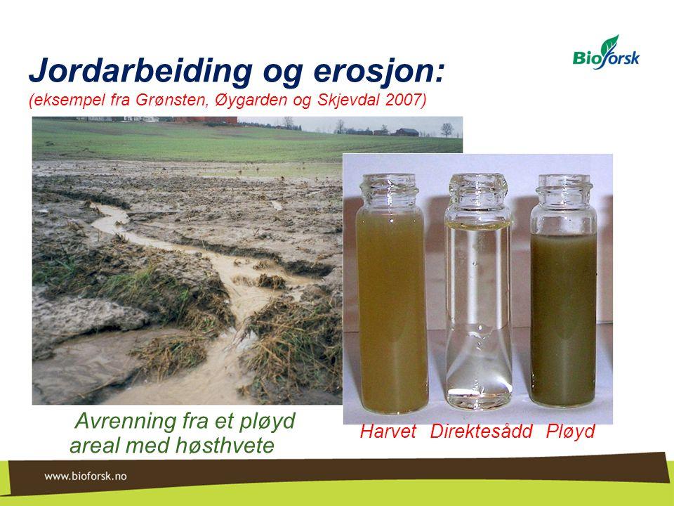 Jordarbeiding og erosjon: (eksempel fra Grønsten, Øygarden og Skjevdal 2007) Avrenning fra et pløyd areal med høsthvete Harvet Direktesådd Pløyd