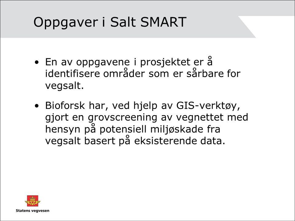 Oppgaver i Salt SMART En av oppgavene i prosjektet er å identifisere områder som er sårbare for vegsalt.