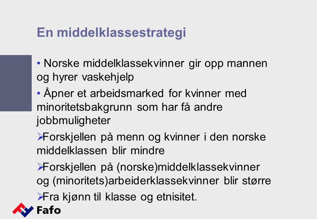 En middelklassestrategi Norske middelklassekvinner gir opp mannen og hyrer vaskehjelp Åpner et arbeidsmarked for kvinner med minoritetsbakgrunn som ha