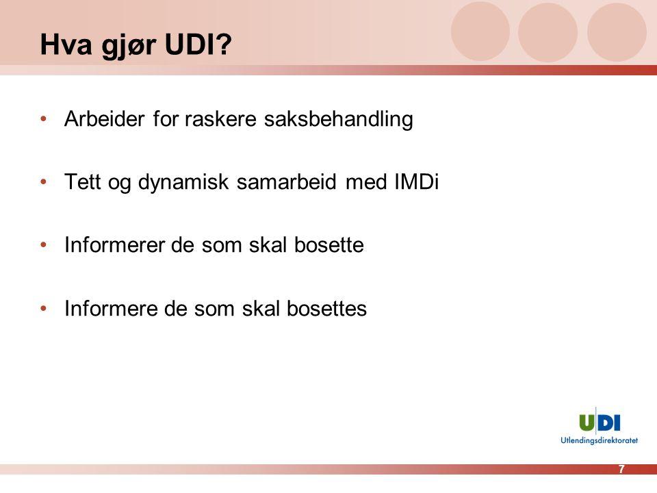 7 Hva gjør UDI.
