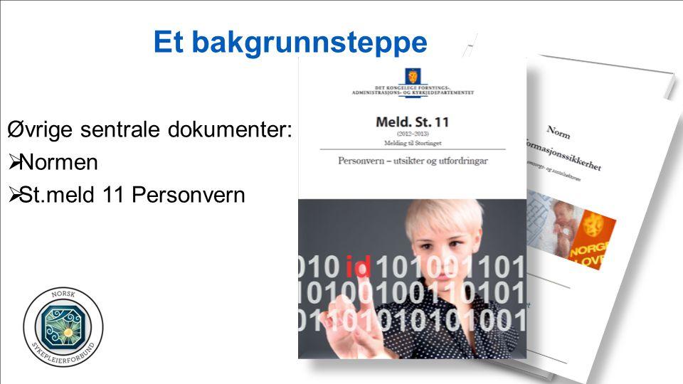 Et bakgrunnsteppe Øvrige sentrale dokumenter:  Normen  St.meld 11 Personvern