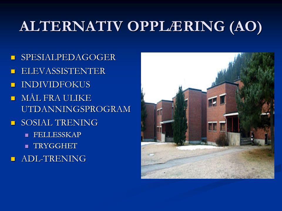 ALTERNATIV OPPLÆRING (AO) SPESIALPEDAGOGER SPESIALPEDAGOGER ELEVASSISTENTER ELEVASSISTENTER INDIVIDFOKUS INDIVIDFOKUS MÅL FRA ULIKE UTDANNINGSPROGRAM MÅL FRA ULIKE UTDANNINGSPROGRAM SOSIAL TRENING SOSIAL TRENING FELLESSKAP FELLESSKAP TRYGGHET TRYGGHET ADL-TRENING ADL-TRENING