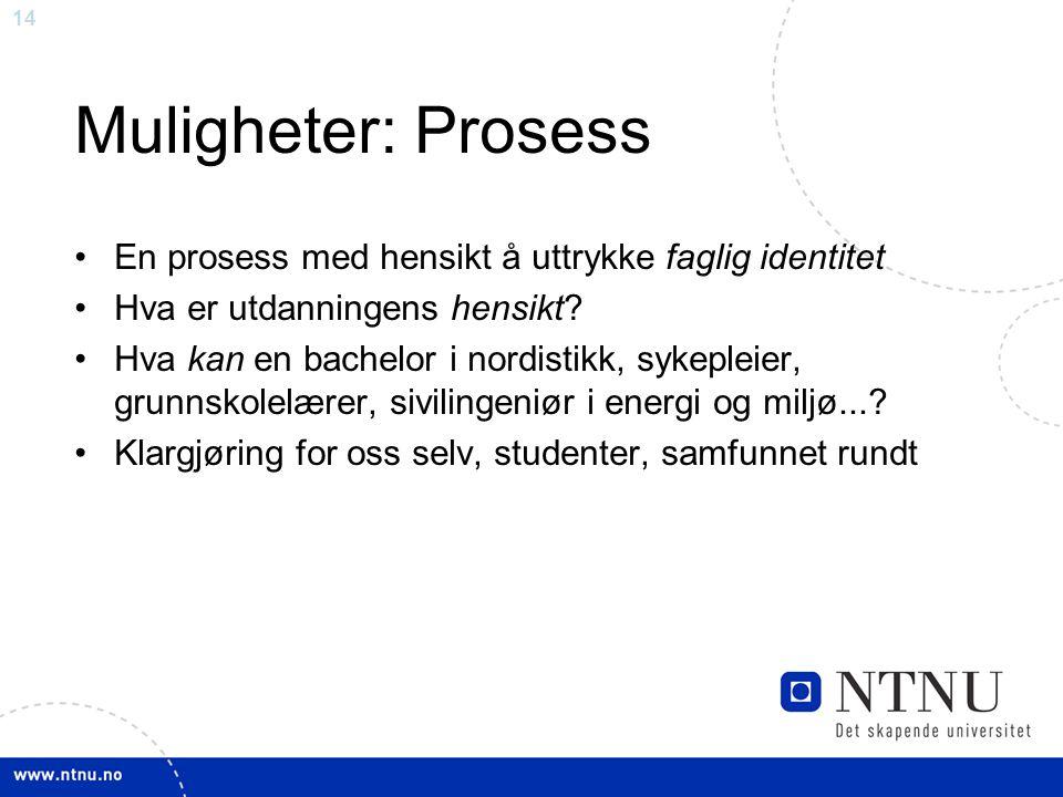 14 Muligheter: Prosess En prosess med hensikt å uttrykke faglig identitet Hva er utdanningens hensikt? Hva kan en bachelor i nordistikk, sykepleier, g