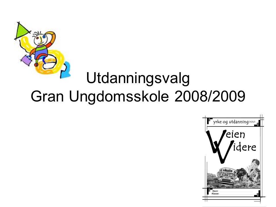 Utdanningsvalg Gran Ungdomsskole 2008/2009