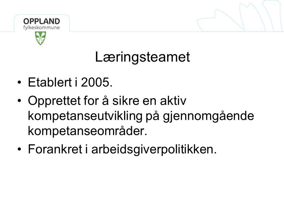 Læringsteamet Etablert i 2005. Opprettet for å sikre en aktiv kompetanseutvikling på gjennomgående kompetanseområder. Forankret i arbeidsgiverpolitikk