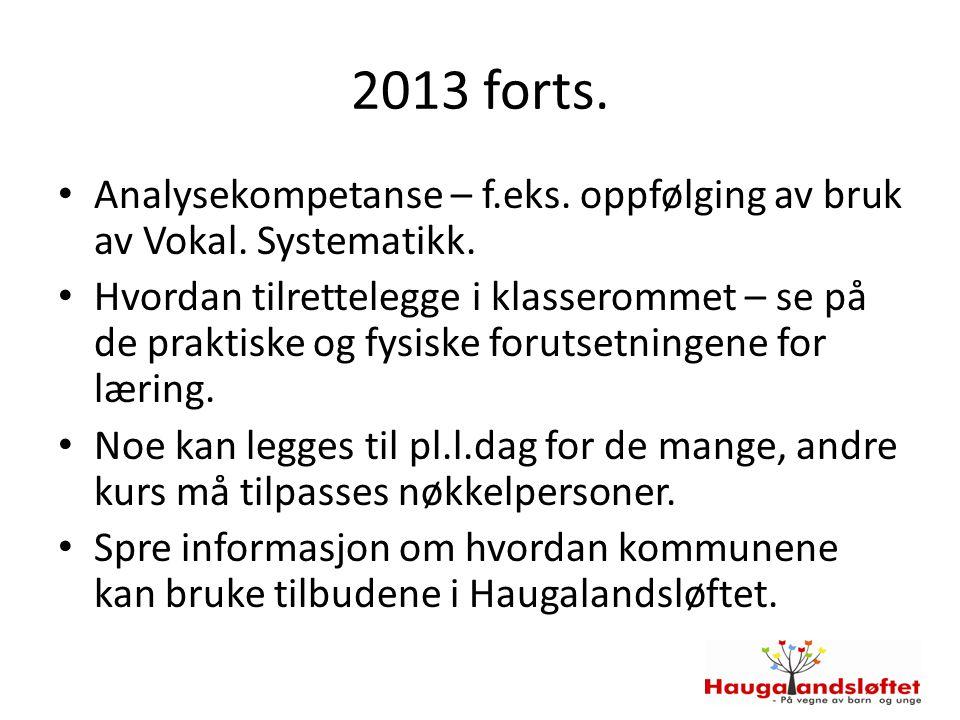 2013 forts. Analysekompetanse – f.eks. oppfølging av bruk av Vokal. Systematikk. Hvordan tilrettelegge i klasserommet – se på de praktiske og fysiske