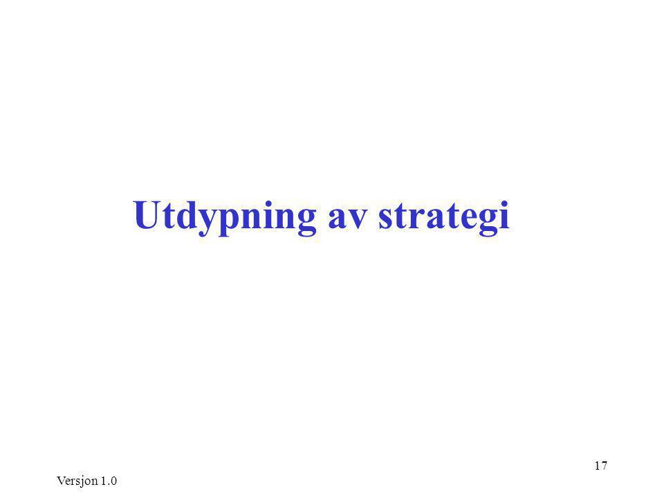 Versjon 1.0 17 Utdypning av strategi