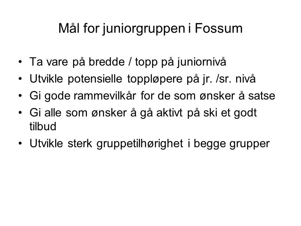 Mål for juniorgruppen i Fossum Ta vare på bredde / topp på juniornivå Utvikle potensielle toppløpere på jr. /sr. nivå Gi gode rammevilkår for de som ø