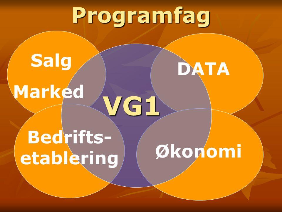 VG1 Salg Marked DATA Bedrifts- etablering ØkonomiProgramfag