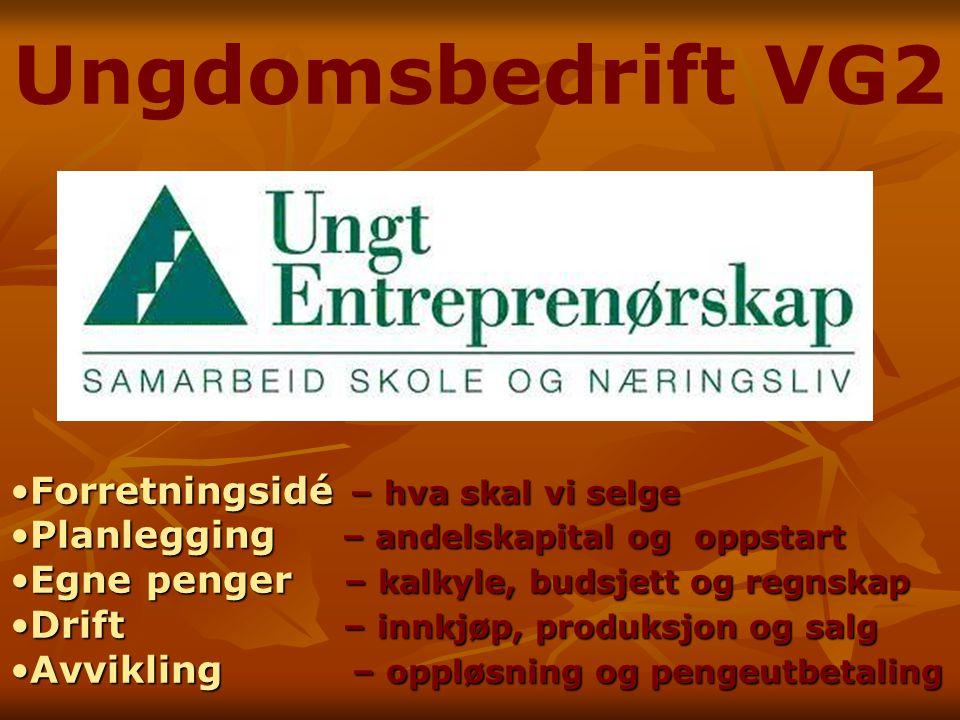 Ungdomsbedrift VG2 ForretningsidéForretningsidé – hva skal vi selge PlanleggingPlanlegging – andelskapital og oppstart EgneEgne penger – kalkyle, buds