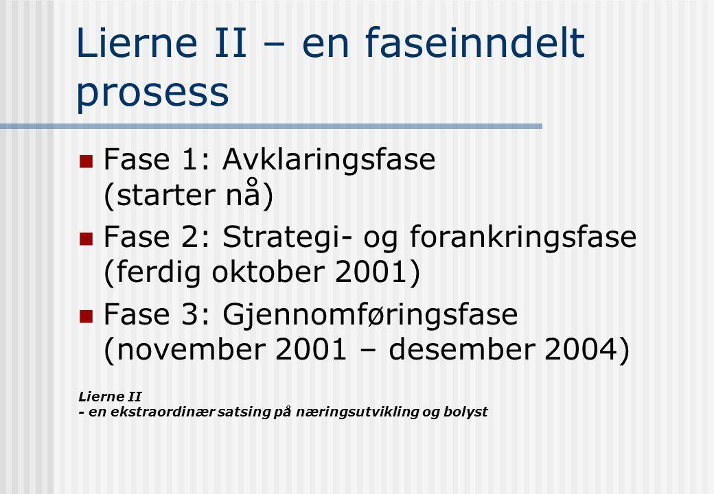 Lierne II - en ekstraordinær satsing på næringsutvikling og bolyst Lierne II – en faseinndelt prosess Fase 1: Avklaringsfase (starter nå) Fase 2: Strategi- og forankringsfase (ferdig oktober 2001) Fase 3: Gjennomføringsfase (november 2001 – desember 2004)